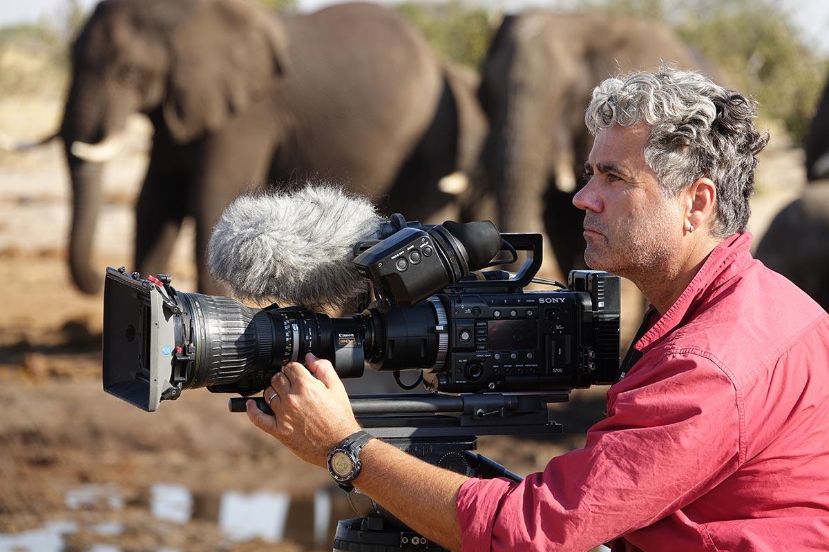 Jens-Westphalen,-Botswana,-Elephants,-Zorillafilm