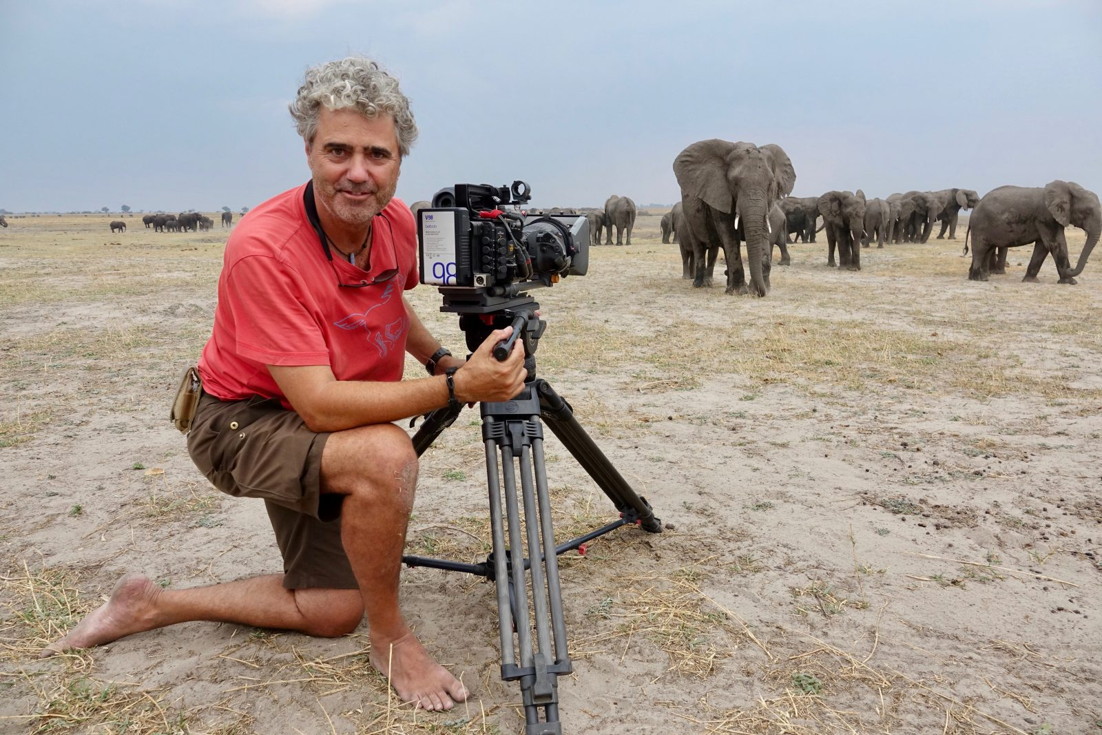 naturfilmer-jens-westphalen-elefanten-nah-dran