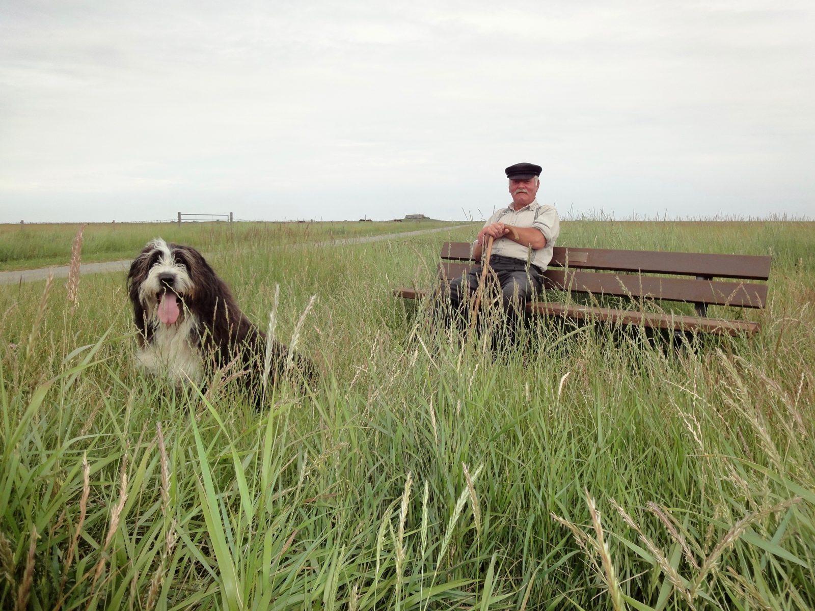 Hallig Langeneß Nordfriesland Zorillafilm