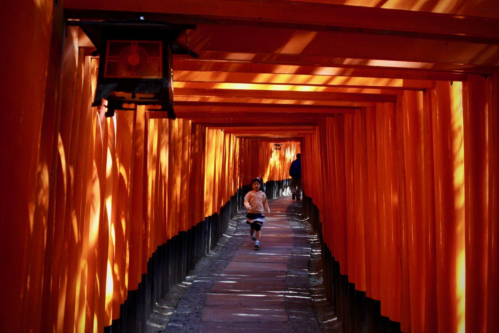 Kyoto Torii Zorillafilm